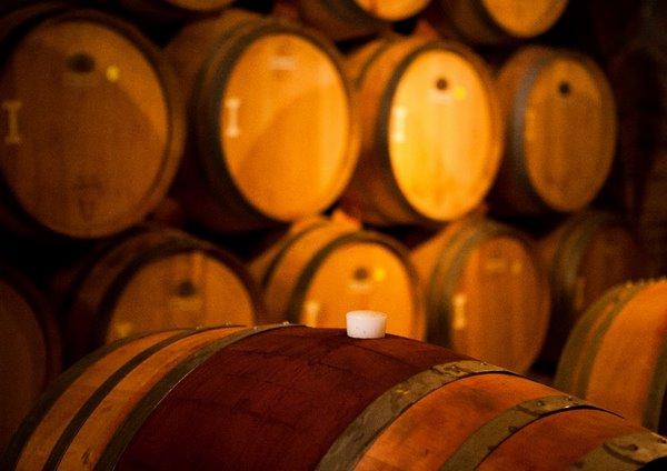 Вино в бочке